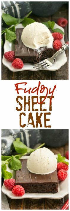 Fudgy Chocolate Sheet Cake with Cocoa Icing | A delectable, ultra-chocolate dessert that feeds a crowd! #sheetcake #chocolate