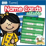 Teachers Pay Teachers Preschool Name Recognition, Name Activities Preschool, Kindergarten Names, Kindergarten Classroom, Abc Centers, Literacy Centers, Branding Pdf, Pre K Pages, Center Labels