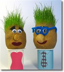 Grass heads - a fun homemade craft idea for kids and those young at heart. Nylon stocking filled with potting soil, vermiculite, sawdust, etc. Grass seed first, then soul; tie and invert. Kids Crafts, Garden Crafts For Kids, Arts And Crafts, Homemade Birthday Gifts, Homemade Gifts For Boyfriend, Do It Yourself Baby, Chia Pet, Ideias Diy, Homemade Face Masks