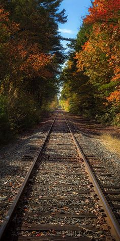 Landscape photograph of New England fall foliage over railroad tracks in Central Massachusetts - by Jonathan Elcock