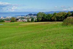 havstein - Google-søk Golf Courses, Google, Macros