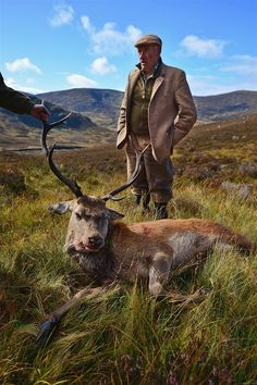 The last stag hunt: 45 years of stalking deer in Scotland