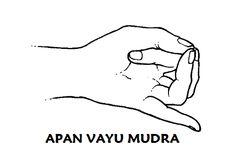 #apan #vayu #mudra (también llamado salvavidas: primeros auxilios en caso de…