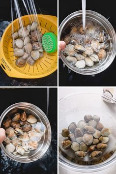 Here's how to clean little neck clams, so you never bite into gritty clams again! A little bit of soaking in saltwater will easily degrit clams for your next soup, salad, or pasta dish. Seafood Dishes, Pasta Dishes, Clams Seafood, Kid Friendly Dinner, Kid Friendly Meals, Clam Recipes, Asian Recipes, Fish Recipes, Seafood Recipes