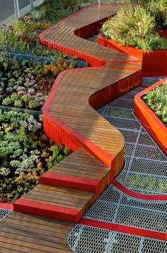 Burnley Living Roofs, HASSELL, world architecture news, architecture jobs
