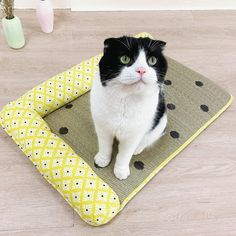 Dog Mat Cooling Summer Pad Mat for Dogs Cat Pet Mat, Medium Dogs, Animal House, Dog Bed, Warm And Cozy, Plush, Cushions, Kids Rugs, Puppies