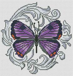 Gallery.ru / Colorado Hairstreak - Бабочки - Norsvet