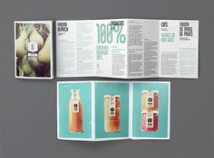 best brochure layout/color palette ever! Identity Design, Design Brochure, Creative Brochure, Brochure Layout, Creative Package, Brochure Examples, Corporate Identity, Brochure Template, Print Layout
