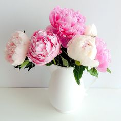 Gorgeous flowers.