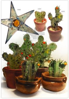 NOVA FUSING cactus vitrofusion