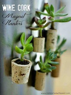 DIY Cork Planter