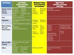 photo regarding Printable Gout Food List identified as Pinterest