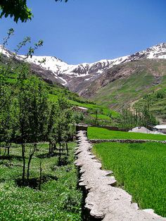 A beautiful village by the name of Phastee in Chitral, Pakistan. The Chitral District is situated on the western bank of the Kunar River, in Khyber Pakhtunkhwa, Pakistan.