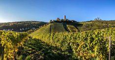 Genießen und Wandern im sonnenreichen Weinbaugebiet Rheingau