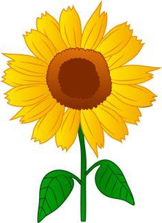 sunflower border clip art sunflowers clip art images sunflowers rh pinterest com sunflower clip art free images sunflower clip art free images