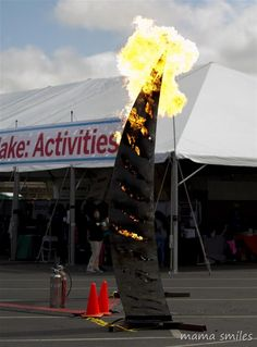 Have you ever been to a Maker Faire? Such a great place to learn about art, crafts, technology, and science! This post highlights my favorites from the San Mateo 2015 Maker Faire.
