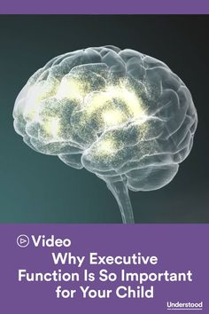 Why Executive Function Is So Important for Your Child