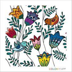 Colorfy - 6Tulips