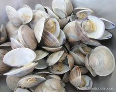 New England Clam Chowder Recipe at ALittleClaireification.com #recipes #seafood #chowder