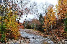 Basin Cascade Trail, Lincoln, New Hampshire