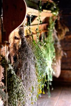Ever dried flowers and herbs from your garden?  Take a loose, small bundle of herbs or flowers - but don't make the bundle too thick.  Air has to be able to flow through your herbs.  I used cotton string (99-cents at the hardware store) and tied my bundle together.  Then I tied that bundle to a wire coat hanger.  Holds several bundles in a dry place - like an attic or a dry closet. /  Wholesome Foodie <3