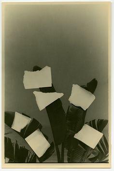 Gelatine, Kunst Inspo, Abstract, Artwork, Prints, Zilver, Fotografie