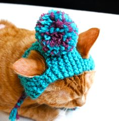 Pom Pom Cat Hat - Teal and Pink - Hand Knit Cat Costume