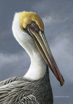 "Mark Mueller Wildlife Art. Oil 7"" x 5""  https://www.pinterest.com/gdepledge/birds/"