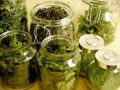 Fermentointi Happy At Work, Preserves, Cucumber, Herbalism, Mason Jars, Berries, Paleo, Herbs, Food