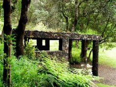 Hoya del Morcillo, isla de El Hierro