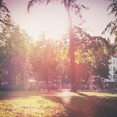 Manchmal Lieblingsspielplatz  #berlin #berlinwedding #zeppelinplatz #summer #sunset #park #urban #flare #mextures