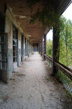 Balkon Abondoned Places Lost Places, Instagram, Random, Brandenburg, Tree Structure, Pictures, Hiking, Casual
