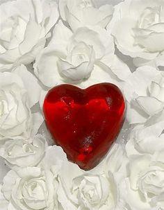 O coração que carrega o amor tem a sobrecarga da paz!!!