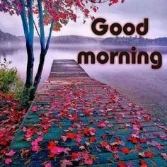 🌞good morning🌞 - @ 52298897 sharechat garde good morning # da hafodt gmg and Good Morning Motivation, Good Morning Prayer, Good Morning My Love, Good Morning Picture, Good Morning Friends, Morning Prayers, Morning Pictures, Good Morning Wishes, Morning Messages