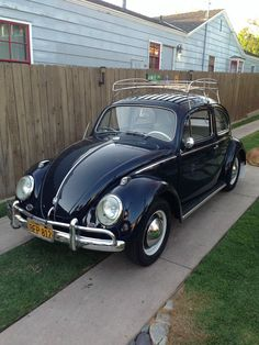 Volkswagen : Beetle - Classic Basic VW