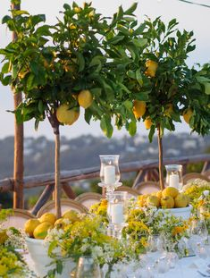 lemon themed wedding in capri Wedding Themes, Wedding Colors, Party Themes, Wedding Flowers, Wedding Decorations, Table Decorations, Wedding Ideas, Wedding Locations, Wedding Signs