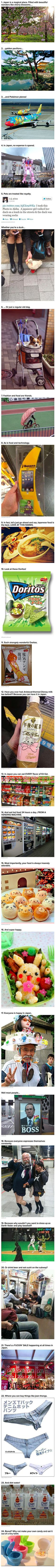 Here are some funny and geeky reasons why you should visit Japan.