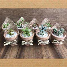 20 Mini Succulent Garden Ideas Around The World Succulent Gifts, Succulent Bouquet, Succulent Gardening, Succulent Arrangements, Succulent Terrarium, Cacti And Succulents, Planting Succulents, Succulents Wallpaper, Succulents Drawing