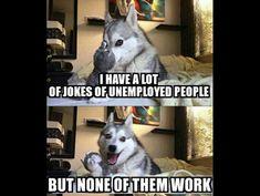 Animal jokes puns & tierwitze & blagues animales calembours & juegos de palabras de animales & animal jokes for kids, funny animal jokes, animal jokes hilarious, farm animal jokes, anim Husky Jokes, Funny Husky Meme, Funny Dog Jokes, Puns Jokes, Corny Jokes, Funny Animal Quotes, Animal Jokes, Stupid Funny Memes, Pun Husky