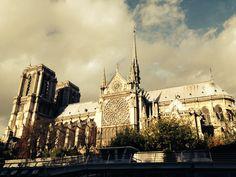 Notre Dame do rio Sena - Paris - Foto: Arquiteta Cláudia F. Ferreira