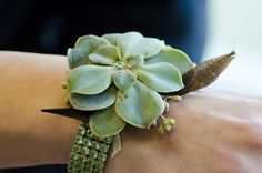 Succulent wrist corsage with feather and bling wristlet.