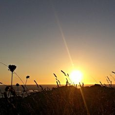 Un día melancólico puede marcar el resto de tu vida. by anusani