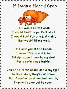 Sweet poem about hermit crabs.