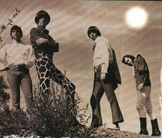 The seeds - Google Search