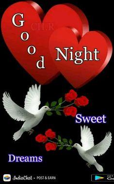 Good Night Angel, Good Night Prayer, Good Night Blessings, Good Night Gif, Good Night Image, Good Night Greetings, Good Night Wishes, Good Night Sweet Dreams, Good Night Beautiful