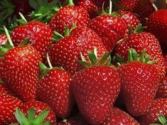 Keep strawberries fresher longer. 1 part vinegar, 10 parts water. Soak all the berries (the entire berry.leaves too) for a few minutes , drain leave uncovered in the refrigerator.does not effect the taste but hinders the mold growth Tasty, Yummy Food, Baking Tips, Cranberries, Kitchen Hacks, Diy Kitchen, Fruits And Veggies, Food Storage, Fresh Fruit