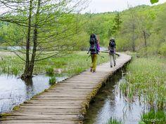 Visitare i laghi di Plitvice in Croazia: trekking ai laghi di Plitvice con informazioni utili sulla visita al parco per chi soggiorna in hotel o in camper