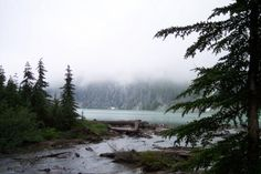 Celebrating five years of wilderness in Washington's Wild Sky