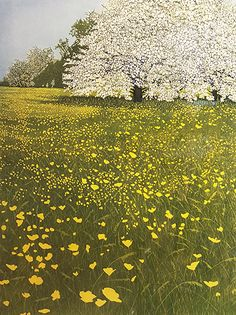 Phil Greenwood Original Etching at Norton Way Gallery Hertfordshire, Original Art Gallery Hertfordshire