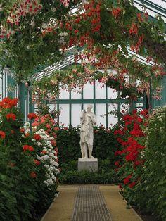 Interior of Laeken Royal Greenhouses - Brussels